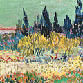 The Garden at Arles  Poster by Vincent Van Gogh