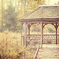 The Gazebo in the Woods Print by Lisa Russo