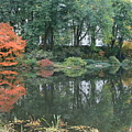 The Pond in Central Park in Fall Print by Christopher Kirby