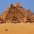 The pyramids in Egypt Print by Dan Breckwoldt