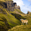 The Quiraing Isle of Skye Poster by John McKinlay