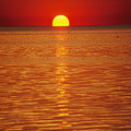 The Sun Sinks Into Pamlico Sound Seen Print by Stephen St. John