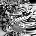 The Web We Weave Print by Wingsdomain Art and Photography