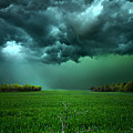 There Came a WInd Print by Phil Koch