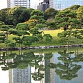 Tokyo Trees Reflection Poster by Carol Groenen