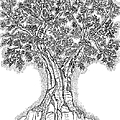 Tree Of Life 1 Print by Glenn McCarthy Art and Photography