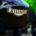 Triumph Poster by Perry Webster