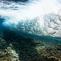 Tropical Wave Curl Print by Dave Fleetham - Printscapes