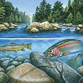 Trout View Print by JQ Licensing