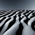 Tunisian Dunes Poster by Tim Booth
