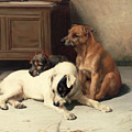 Waiting For Master Print by William Henry Hamilton Trood