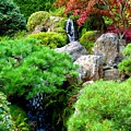 Waterfalls in Japanese Garden Print by Carol Groenen