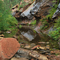 West Fork Trail River and Rock Vertical Print by Heather Kirk