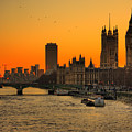 Westminster & Big Ben London Poster by Photos By Steve Horsley