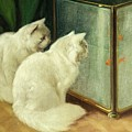 White Cats Watching Goldfish Poster by Arthur Heyer