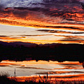 Wildfire Sunset Reflection Image 28 Poster by James BO  Insogna