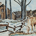Winter Grazing  Print by Charlotte Blanchard
