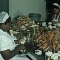 Women Pick And Pack Crab Meat Into Cans Print by Robert Sisson