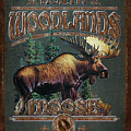 Woodlands Moose Poster by JQ Licensing