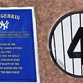 Yankee Legends number 4 Print by David Lee Thompson