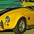 Yellow Cobra Print by Gwyn Newcombe